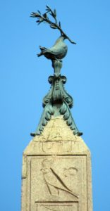 Dove on the top of Egyptian obelisk at the Fountain of Fur Rivers in the middle of Piazza Navona in Rome
