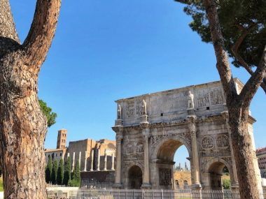 Arch of Constantine near Colosseum under the pine trees in Rome